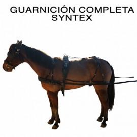 GUARNICION ENG  SYNTEX...