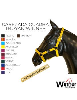 CAB. CUADRA TROYAN + PLACA...