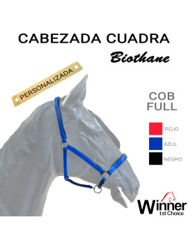 PERSONALIZADA CABEZADA...